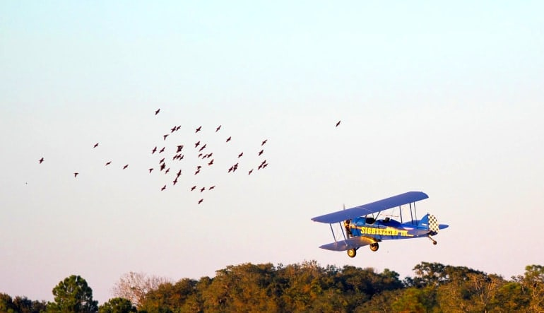 Smoky Mountain Biplane Ride Intro Flight