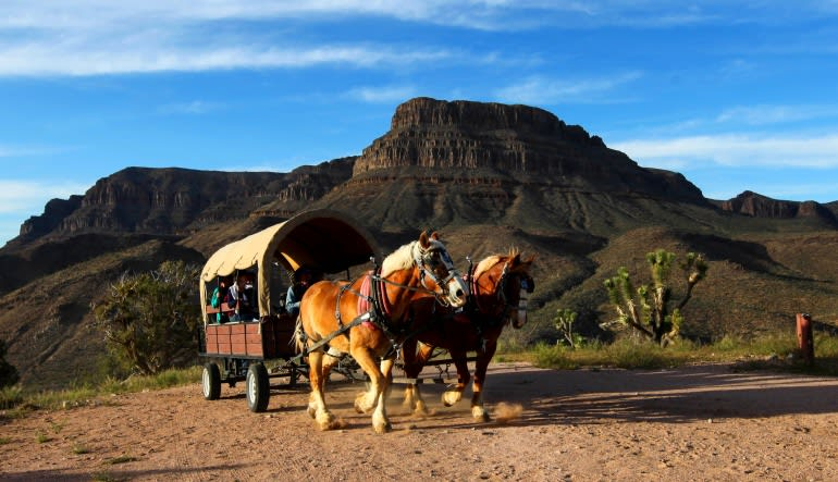 Grand Canyon West with Wagon Ride Horses