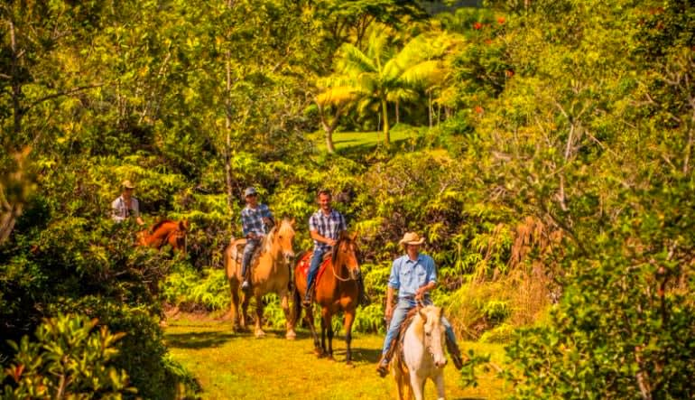 Horseback Ride Kauai Discovery Tour Bush