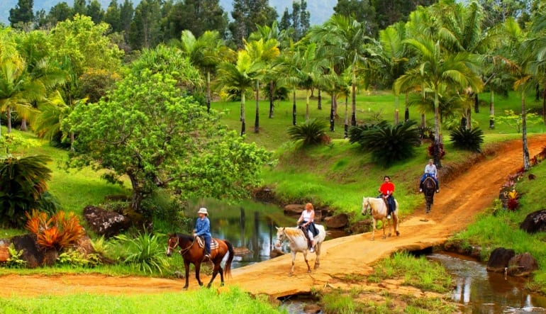 Horseback Ride Kauai Discovery Tour Group