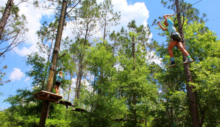 Tree Trek Adventure Orlandos