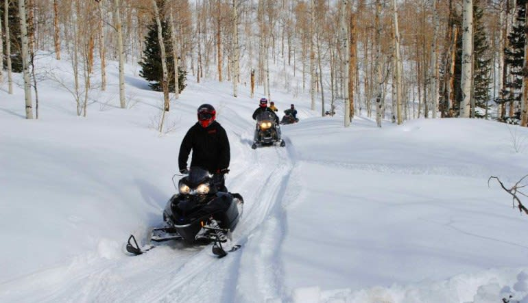 Snowmobile Tour for 2 on Private Trails Group