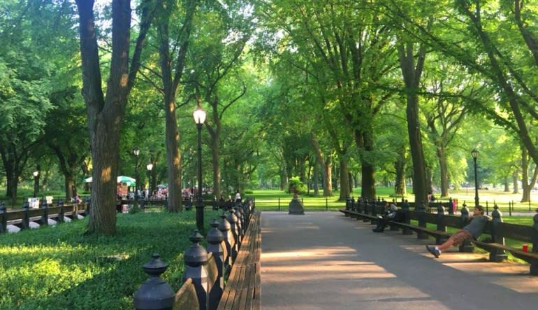 New York City Running Tour, Central Park Path