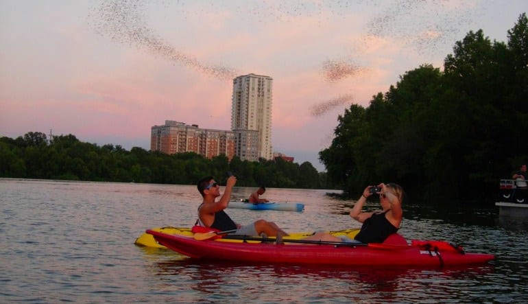 Kayak Tour Austin, Congress Ave Bridge Bat Tour Dusk