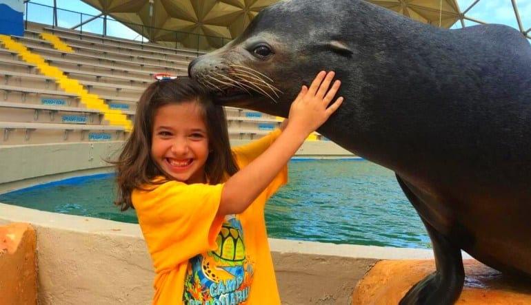 Seal Swim Miami with Admission to Seaquarium Little Girl