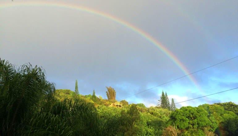 Zipline Maui Rainbow