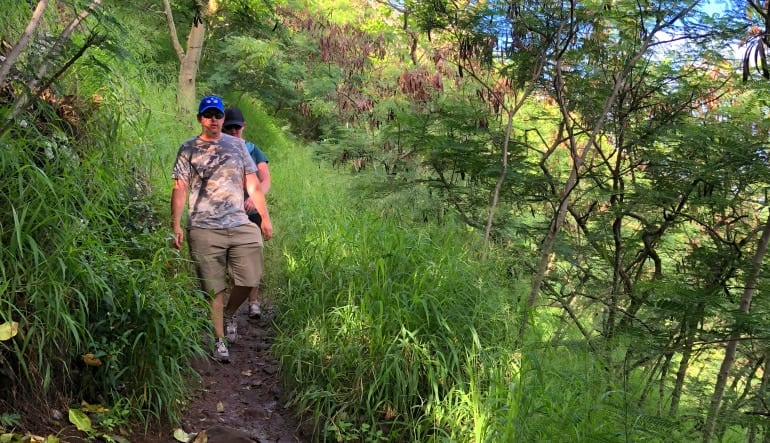 Beginners Guided Hike Oahu Walk Way