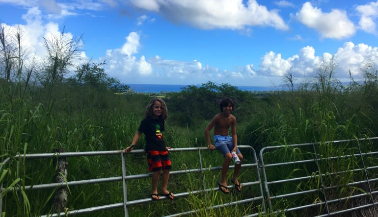 Beginners Guided Hike Oahu Rest Stop