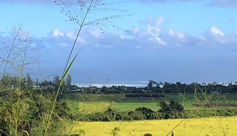 Beginners Guided Hike Oahu Landscape