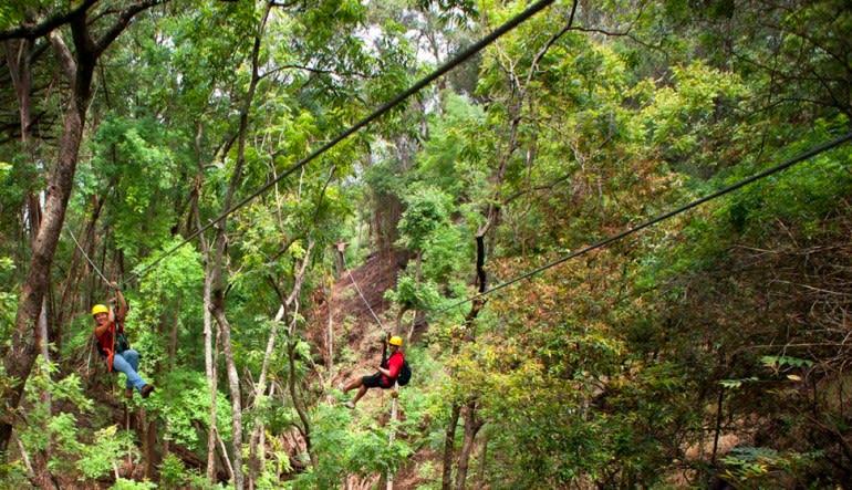 Waterfall Hike and Zipline Tour Maui Line