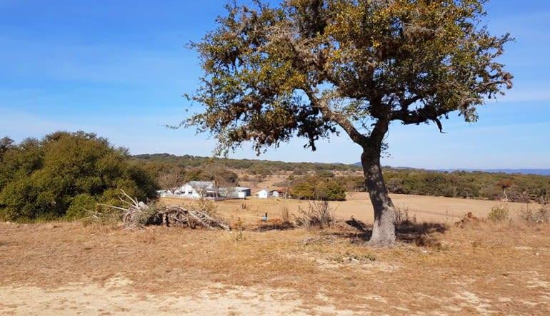 Horseback Riding San Antonio, Texas Hill Country Landscape