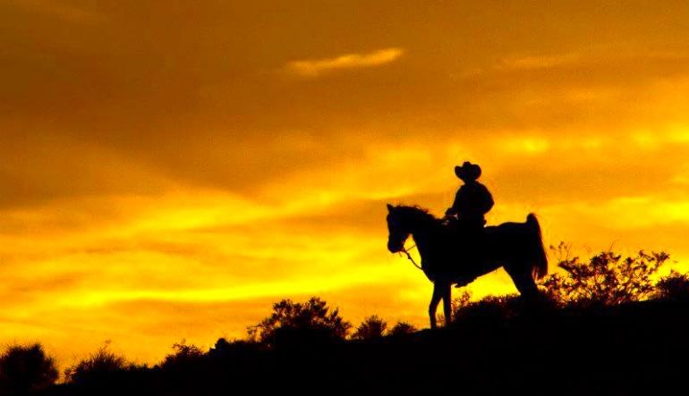 Wild West Horseback Riding Las Vegas Shadow