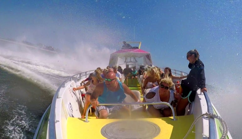 Speed Boat Ride and Dolphin Watch Ocean City Splash