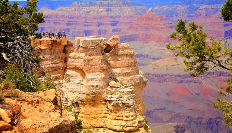 Grand Canyon South Rim Coach Bus Tour from Phoenix Landscape