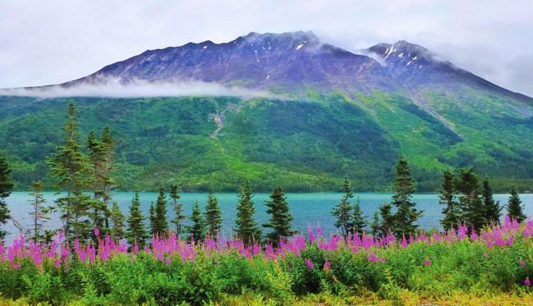 Yukon Hummer Tour Klondike - 5 Hours Landscape
