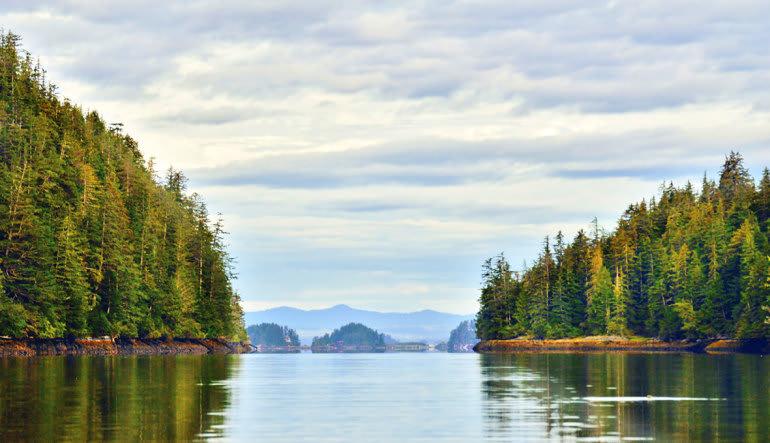 Sitka Sea Kayaking Tour - 3 Hours Landscape