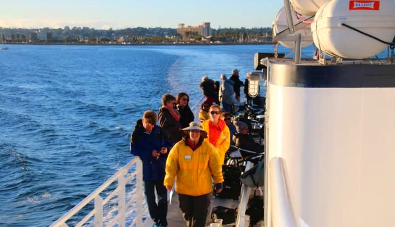Summer Whale Watching Cruise San Diego - 4 Hours Group