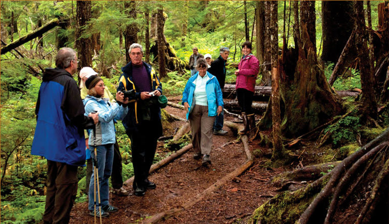 Ketchikan Rainforest Canoe & Nature Trail Adventure - 3.5 hours Trail