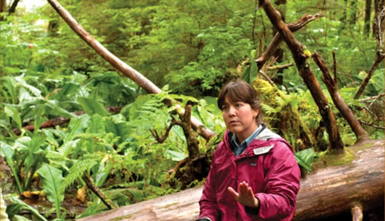 Ketchikan Rainforest Canoe & Nature Trail Adventure - 3.5 hours Forest