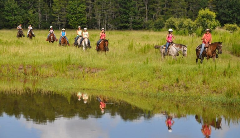 Horseback Riding Orlando, Trail Adventure Group