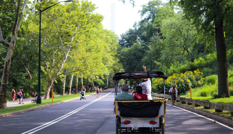 Central Park Pedicab Tour- 1 Hour Riding Away