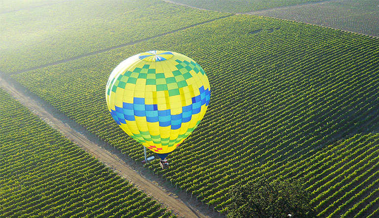 Hot Air Balloon Flight Sonoma - 1 Hour Ride