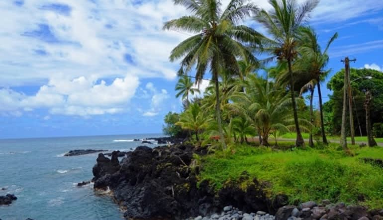 Luxury Road To Hana Waterfalls and Lunch - Full Road