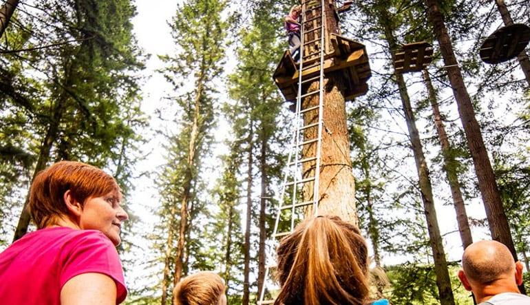 Zipline Treetop Adventure Omaha, Ashland - 2 Hours 30 Minutes