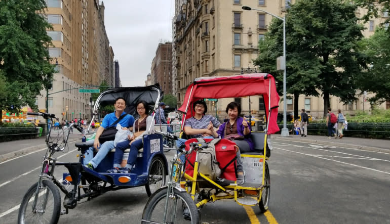 Pedicab Guided Tour, Central Park - 1 Hour