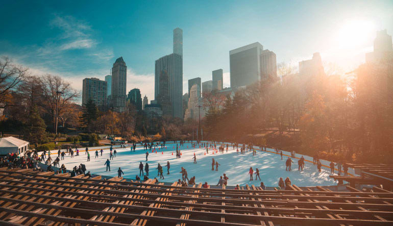 Central Park Walking Tour & Ice Skating, New York - 1 Hour