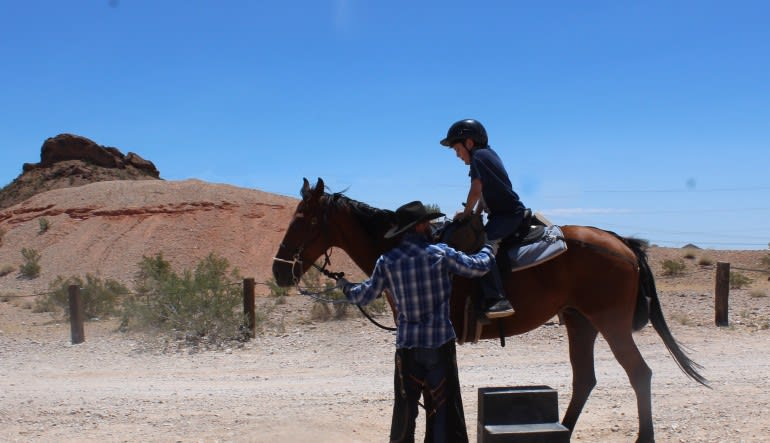 Horseback Riding, Las Vegas - (Includes Lunch & Show)
