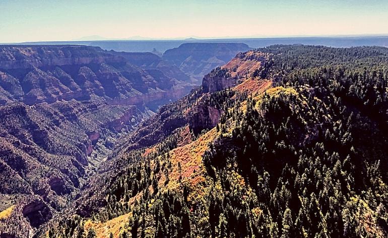 Grand Canyon South Rim Plane Tour - 50 Minutes