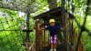 Ziplining Harpers Ferry, 8 Zip Adventure Platform