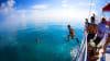 Reef Snorkel and Catamaran Cruise Key West