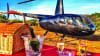 Private Helicopter Ride Los Angeles, Mountain Landing Champagne Picnic Another Aircraft