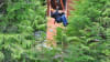 Ketchikan Zipline Adventures, Tongass National Forest