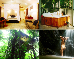 Spa Weekend Escape, Private Rainforest Hideaway - Daintree QLD