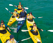 Sea Kayaking, Dolphin Sanctuary and Point Nepean - Mornington Peninsula