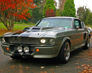 Ford Mustang Shelby GT 500, 2 Hour Mountain Cruise For Up To 4 Passengers, Melbourne
