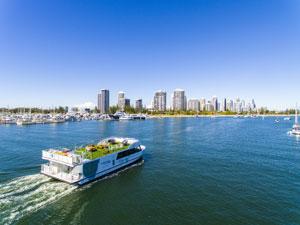 Surfers Paradise & Broadwater Sightseeing Cruise, Surfers Paradise - Afternoon Cruise
