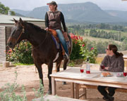 Horse Riding - Trail Ride plus Wine Tasting - Blue Mountains