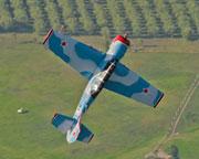 Aerobatics, Yak-52 Warbird Flight, 15-20 minute - Maitland Airport