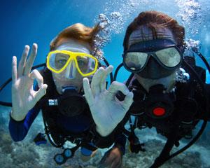 PADI Scuba Diving, Open Water Course, 2 Days & 1 Evening, Mornington Peninsula - Melbourne