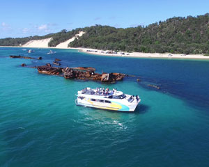 Dolphin & Tangalooma Wreck Cruise - Brisbane INCLUDES SNORKEL TOUR!