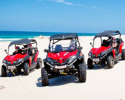 Quad Bikes, Stradbroke Island Dune Buggy Adventure for 2, Half Day - Gold Coast