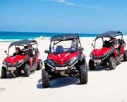 Quad Bikes, Stradbroke Island Dune Buggy Adventure, Half Day - Gold Coast