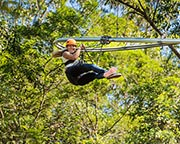 Tree Top Crazy Rider 'Xtreme' 1km Flying Fox Experience - Central Coast
