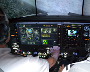Corporate Jet Flight Simulator with Realistic Motion, 30 Minutes - Melbourne