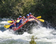 White Water Rafting, Lower Mitta River - Dartmouth VIC