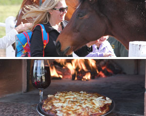 Horses, Wine & Beer Tour of Melbourne